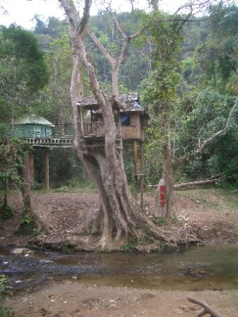 Wild elephant valley-  - the main viewing platform