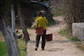 Yangdi to Xingping along the Lijiang river: by nomadnorrie, Views[232]