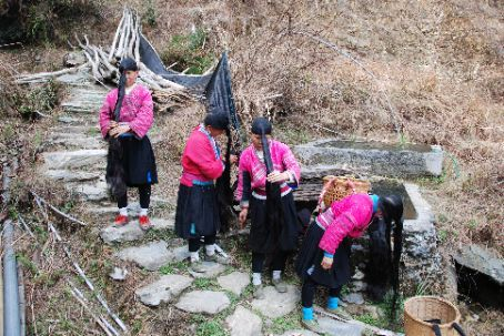 The local Dong minority in Longji, the women have tremendously long hair