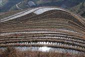 Longji rice terraces: by nomadnorrie, Views[313]