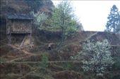 Jilun: by nomadnorrie, Views[444]