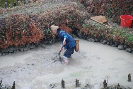 Working the fields in Jilun
