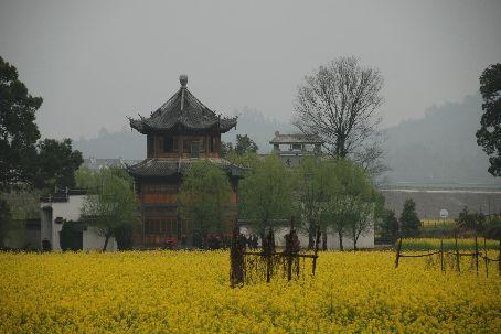 Xiaoqi