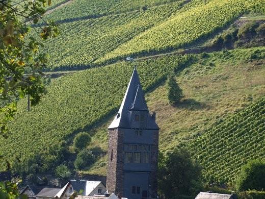 Bacharach vines