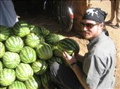 the best watermellons ever: by nutrigardener, Views[330]
