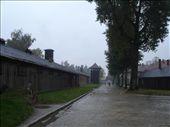 by nznl1, Views[135]