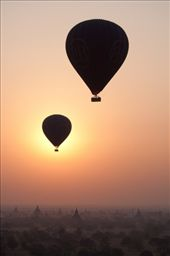 Balloons rising at sunrise over the ruins on the plain of Bagan. While a horse cart will take you up close and personal to the temples, the majesty of the Bagan  Archaeological Zone can be truly appreciated from the air.: by obliqueimages, Views[258]