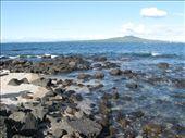 Sea Shore: by obonini, Views[306]