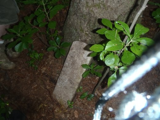 Found this grave or property marker in the woods on campus while out geocaching.