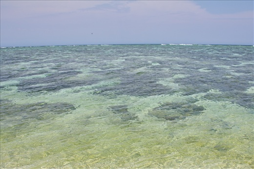 Infinite view of real freedom, where the eye meets the horizon. Coral Lagoon at Lady Elliot Island, Australia