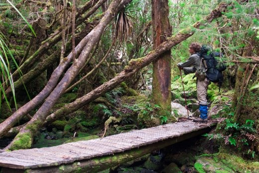 This was one of the many hand made bridges for walkers along the track. This particular one was halfway up Barrons Pass and presented us with the opportunity to take a break and refresh ourselves and the water supply. The hiker in the image is George and has to be one of the fittest and kindest people I have ever met.