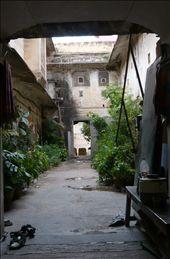 El jardín secreto! Un pasillo oculto en medio de todo el bullicio de la ciudad!: by olivia_cerezo, Views[157]