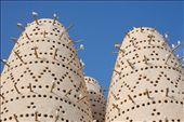 Qatar: by omaninawal, Views[102]
