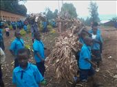 pupils of primary school in extra curriculum activities : by outhere, Views[99]