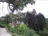 Prayer flags on hill at Swayambhunath Temple: by over-40, Views[370]