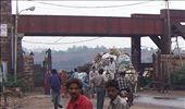 Bullock cart exiting the Yamuna River road/rail bridge, Agra: by over-40, Views[909]
