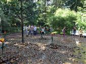 Trick Fountain: by paganmaven, Views[45]