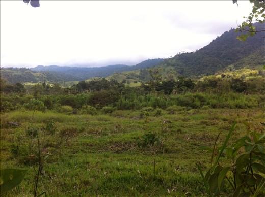 Ecuador Nature: Inspiration for cuisine
