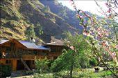 Gushaini Homestay.: by pamelachin, Views[140]