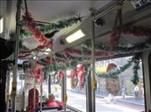 A decorated bus on 23rd December.: by partners-in-crime, Views[377]