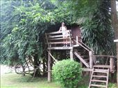 Our tree house hotel room in Pai: by partners-in-crime, Views[284]