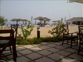 Lunch at Rotana on the beach: by partners-in-crime, Views[113]