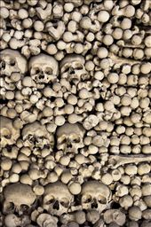 When a church was build in the center of the cemetery, they also built a room beneath the church purposed to keep the large amount of bones to be preserved. The number of skeletons in this cemetery was around 40.000 to 70.000 people. : by patrick, Views[136]