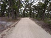 Didn't I see this road already?  Uh oh..Think I'm lost.: by paul_byrom, Views[320]