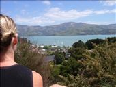 If you were Lisa and you'd been dragged out on yet another hike in Akaroa.  This is what you'd see!: by paul_byrom, Views[209]