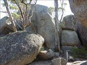 Granite Boulders, Castle Rock Sky Walk, Porongurups: by pauline, Views[579]