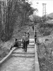 These guys came down these stairs and along a mountain track sporting these homemade bamboo stilts , not once coming a cropper , tidy performance ...: by paulmatthew, Views[165]