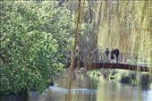 Família no rio Avon na parte norte do Hagley Park. Falta pouco para o início da primavera.: by pauloaprado, Views[255]