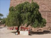 Mehrangarh Fort: by pauluiza, Views[402]