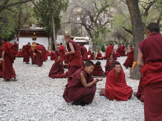 Sera Monastery - monks debating