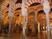 Cordoba - Mezquita: by pauluiza, Views[359]