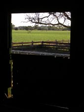 Another day of back-breaking effort dawns on the shearing shed at Greyholme.: by peachgone, Views[108]