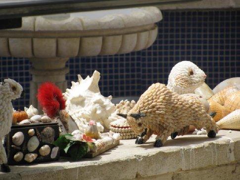 many shell souvenirs