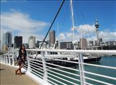 Sail away at the city of sails, Auckland: by peppermench, Views[102]