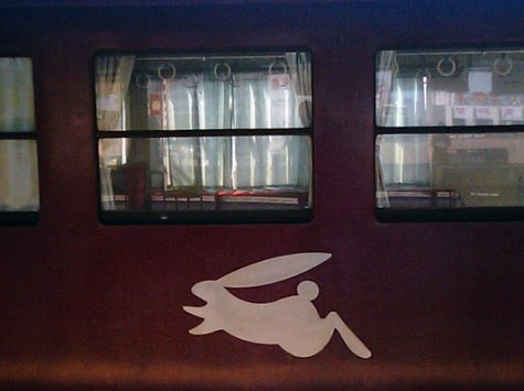 The logo on the Watarase line train, which is usually a single carriage and comes about once every 70 minutes or so. I have to follow the white rabbit to get home.