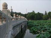 Beihai Gongyuan: by phil, Views[210]