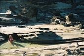 Cooling off in the Rockpools: by phil_green, Views[58]