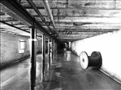 Highland Park Distillery Malt Rooms: reminiscent of the islands baron beaches.: by pictspix, Views[77]