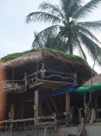 Ting Tong Bar