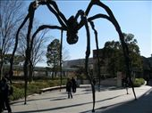 Standing under Louise Bourgeois' 'Maman.': by pjscheck, Views[533]