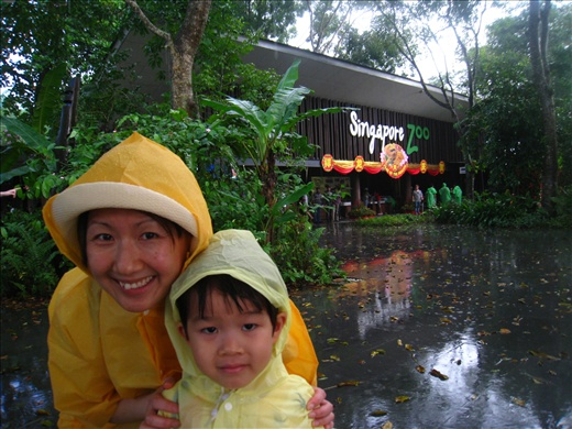 Visit to the Singapore Zoo ended with pouring rain for over an hour, what an adventure trying to leave!
