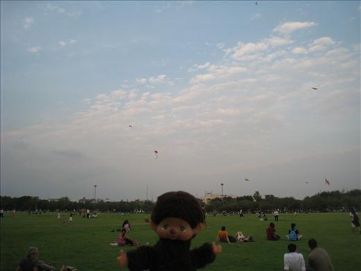 Kite flying during dusk