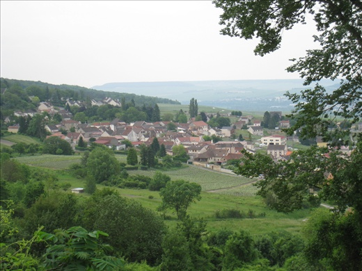 Looking down at the beautiful Épernay valley in the Champagne region