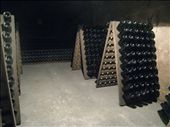 Millions of bottles of champagnes aging in the Moet cellars. These are ready to be turned daily to gather the sediments at the neck.: by pmok, Views[174]