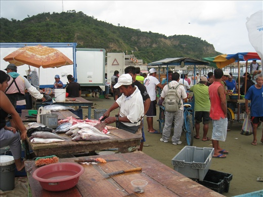 Fish market is a flurry of activities in the morning: fishermen, the butcher, the vendors, the trucks, the curious tourists, and then there's us!