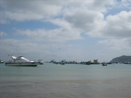 There are views of the beach here without dead sharks. From the shore can see fishing boats and boats that take tourists to Isla de la Plata or whale watching.